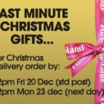 Last Minute Christmas Gifts can be ordered 2 days before Christmas!