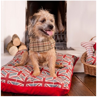 Union Jack dog Pillow Bed