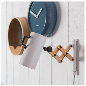 Flex Extendable Arm Wall Lamp
